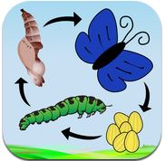 A Life Cycle App